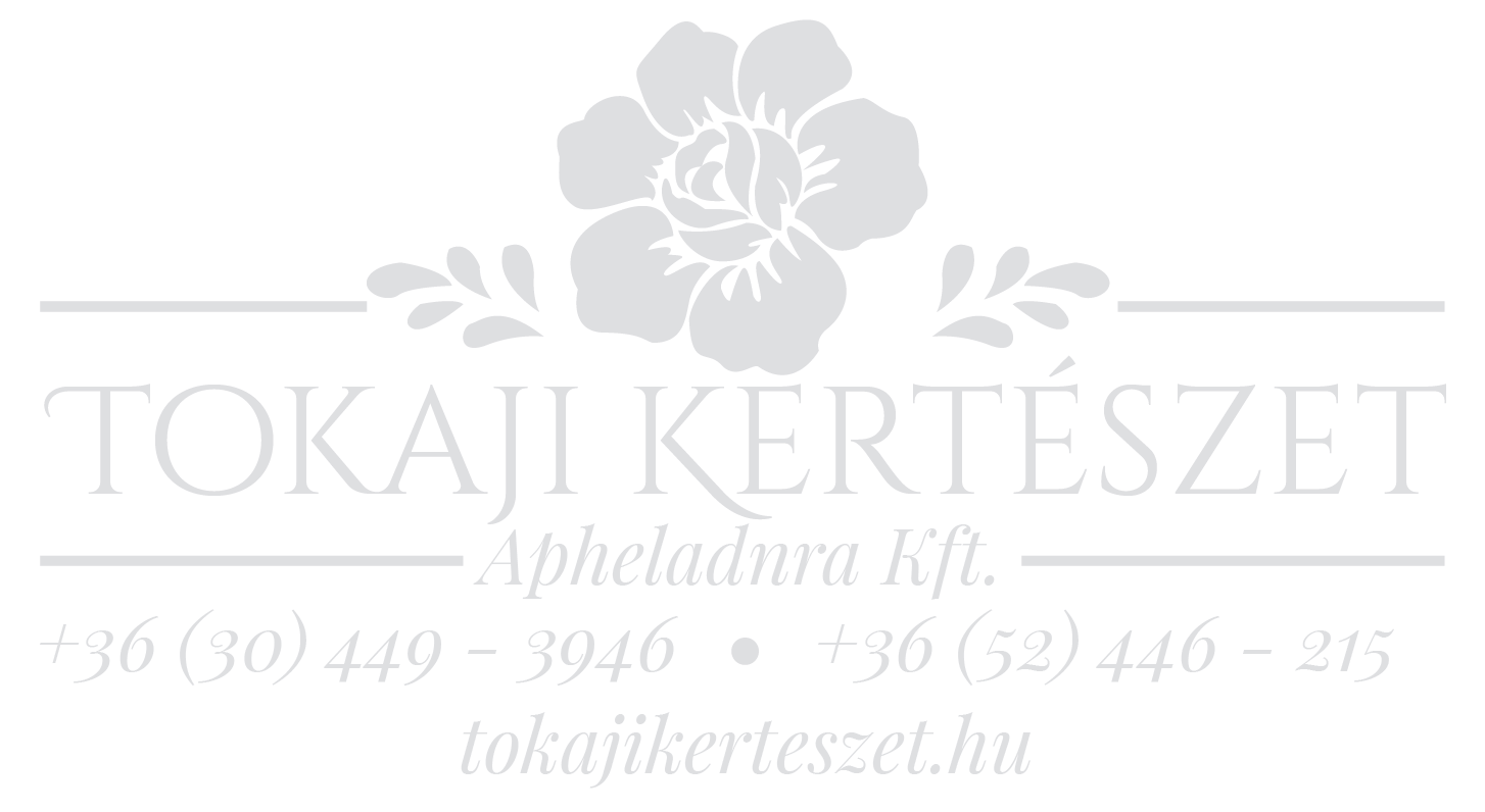 Tokaji Kertészet Logo